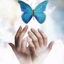 Бабочка – символ помощи