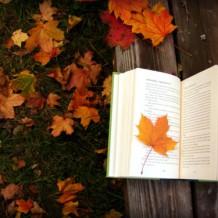 Мечтать не вредно: книги, меняющие настроение
