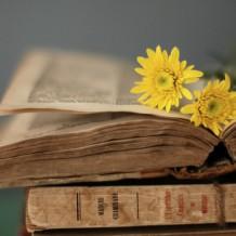Любовь и мироздание: что читать в марте