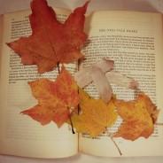 Обрести себя: что читать осенью